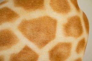 Steiff Studio Size Giraffe