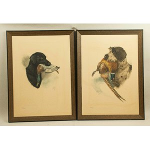 Two Limited Edition Hunting Dog Etchings