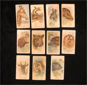 Allen and Ginter Cigarette Cards