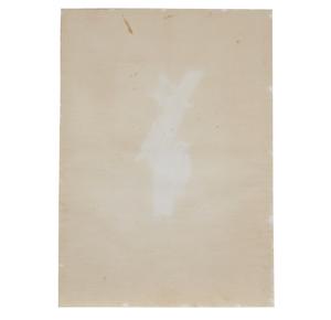 Color Engraving, John J. Audubon / R. Havell,
