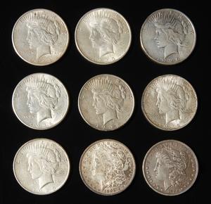 Nine Morgan & Peace Silver Dollars