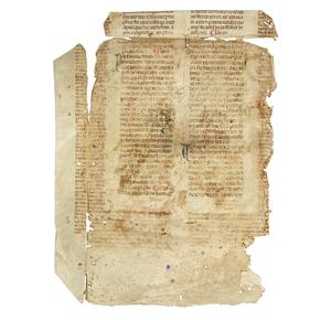 Manuscript Page on Vellumin Latin circa 1350