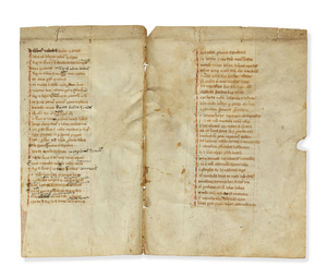Two Pages in Latin on Fetal Vellum