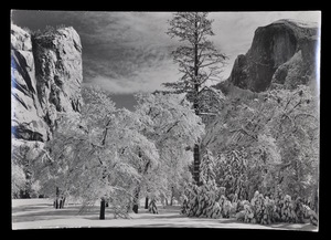 Photograph of Yosemite Park by Ansel Adams