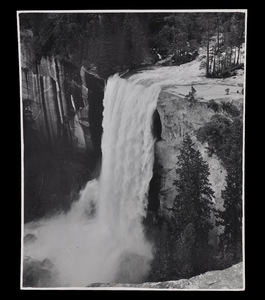 Four Photographs of Yosemite Park