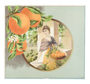 Fruit Label - Unmarked, Oranges and Portrait of a Woman (Sample)
