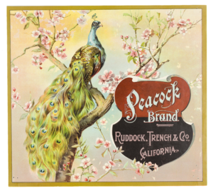 Fruit Label -