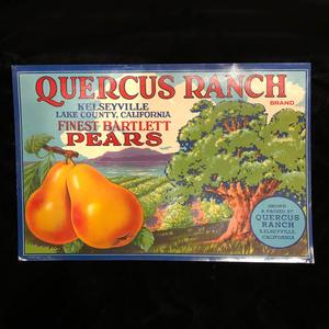 Four California Fruit Labels