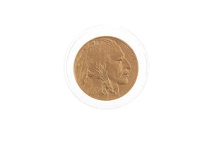 1 oz American Buffalo Gold Coin 2006 BU