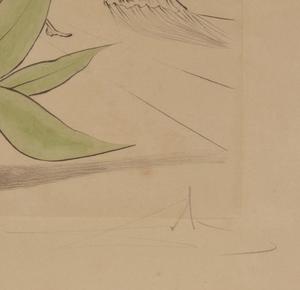 After Salvador Dali, Etching,