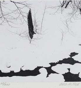 George Tice (b. 1938), Untitled Pair of Prints