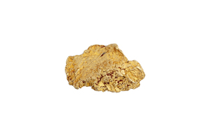 Gold Nugget, 27.5 grams