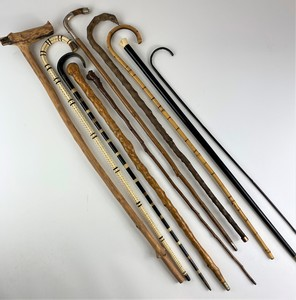 Collection of Canes, Including Vertebrae, Sword and Others