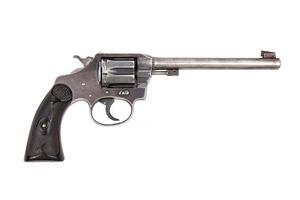 Colt Police Positive Target Model  D