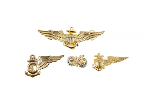 US Navy and Marine Corps flight insignia