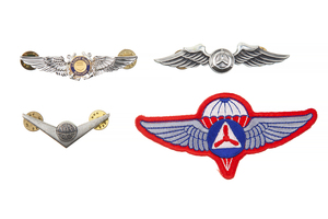 US Civil Air Patrol Wings and Insignia