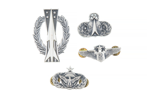 72 U.S. Air Force Wings and other Metal Insignia